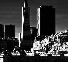 SF, infra-red by Lenny La Rue, IPA