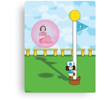 GG Super Mario 3D World Canvas Print