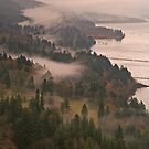 Heavy Mist in the Gorge by Randy Richards