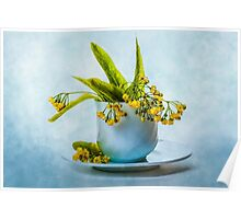 Linden tree flowers in a teacup Poster
