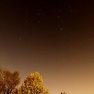 After the April 14, 2010 Meteorite over Rockford by Erik Anderson