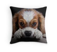 Shamelessly Persuasive Throw Pillow