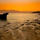 The Dying Light by RichardIsik