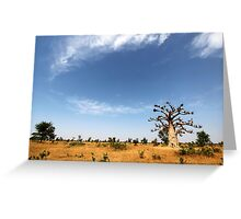 Baobab Tree and Blue Skies Greeting Card