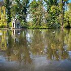 The Pond by DonDavisUK