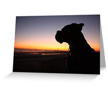Boxer at Sunset on Sand Greeting Card