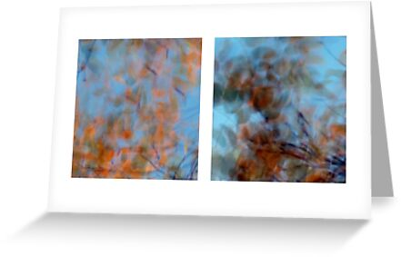 Autumn Impressions - Diptych #3 by Kitsmumma