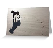 Boxer at the Beach Greeting Card