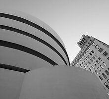 Guggenheim Museum by Paul  Kane