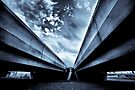 Blue Jay Way by Paul Louis Villani