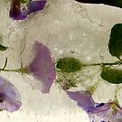 purple ice - 2 of 2 by natalie angus