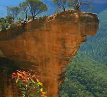 Hanging Rock at Blackheath by Michael Matthews