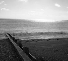 Groyne and Beach at Winchelsea by roskolewis