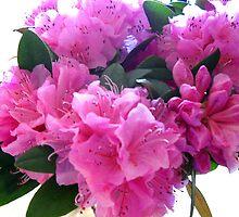Pink Bouquet by debbiedoda