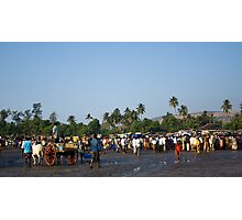 Fish auction Photographic Print