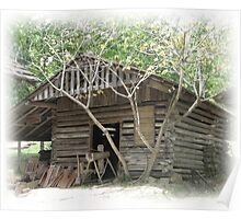 Log Utility Shed Poster