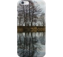 Of Mirrors and Trees iPhone Case/Skin