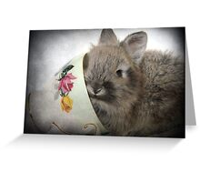 Bunny And Teacup Greeting Card
