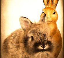 Real Rabbit and Fake Rabbit by angelandspot