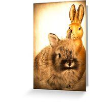 Real Rabbit and Fake Rabbit Greeting Card