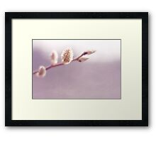 willow Framed Print