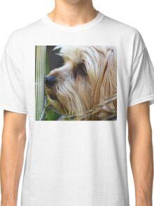 Little york dog Classic T-Shirt