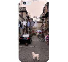 Chinese Laundry - Shanghai, China iPhone Case/Skin