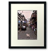 Chinese Laundry - Shanghai, China Framed Print