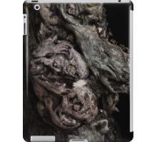 Lair iPad Case/Skin