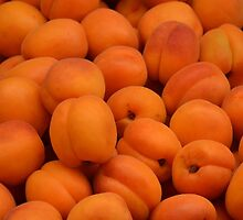 Apricots by Arie Koene