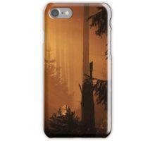 Golden light iPhone Case/Skin