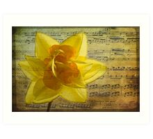 Symphony in yellow Art Print