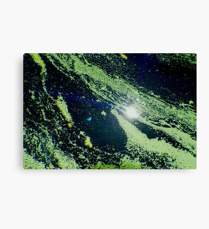 Scum Canvas Print
