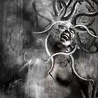 Medusa by Martin Muir