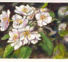 Fruit Tree Blossom by Dai Wynn