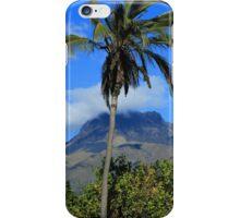 Palm Tree and Mount Imbabura iPhone Case/Skin