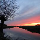 Icelandic volcanic ash colours sunset in Gouda  ... by Hans Bax