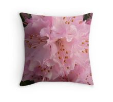 first rhododendron of the season Throw Pillow