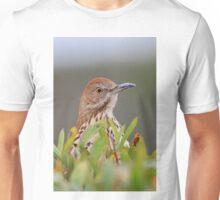 Brown Thrasher Unisex T-Shirt
