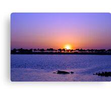 Fred Howard Beach-Tarpon Springs Florida Canvas Print