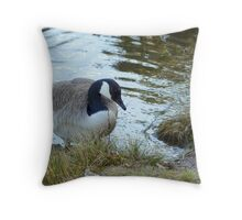 Water World - Keen on Company Throw Pillow