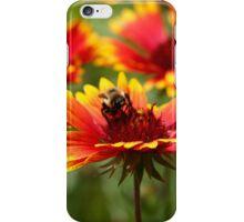 The Pollinator  iPhone Case/Skin