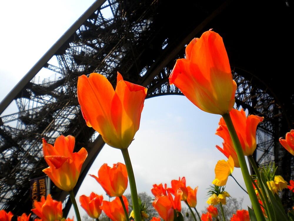Paris in the Spring by Josephine Pugh