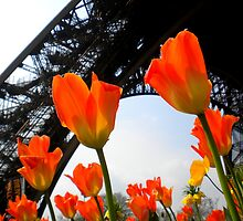 Paris in the Spring by Josephine Pugh