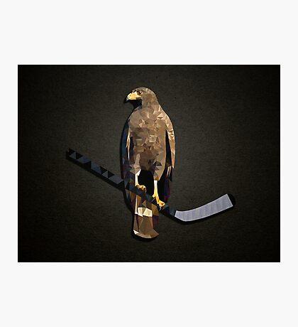 Polyhawk on Black Photographic Print