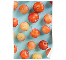 Plums on blue Poster