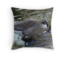 Water World - Mother Goose Grazing Throw Pillow