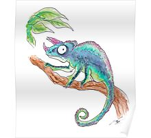 Colourful Chameleon  Poster