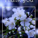 Thank You - Spring Spirit 1  by AngieM