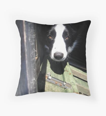 Be My Friend Throw Pillow